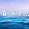 ANA phoneをMNPで申し込んでみた。修理や割引はどうなる?